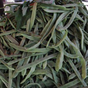 Taze Fasülye  500 gr